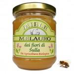 Miód z siekiernicy włoskiej (sulla) BIO 250g Melauro