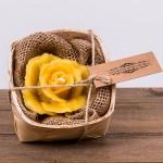 Świeca woskowa róża w łubiance Łysoń