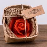 Świeca woskowa czerwona róża w łubiance Łysoń