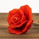 Świeca woskowa róża czerwona Łysoń