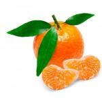 Klementynki świeże BIO siatka ok. 05 kg