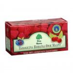 Herbatka owoc maliny BIO 20x3g Dary Natury