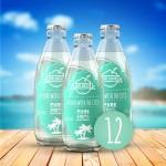 Woda kokosowa - butelka szklana 250ml (12 szt.) Dr Coco