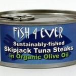 Tuńczyk Steak w ekologicznej oliwie z oliwek ze zrównoważonych połowów 160g Fish4ever